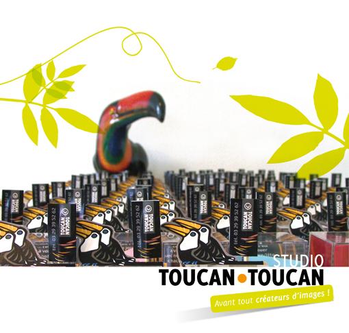 T•T 2013-Armée TOUCANS-pf